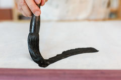 Writing Chinese Calligraphy Royalty Free Stock Images