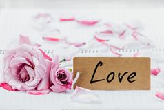 Writing love on card. Royalty Free Stock Photos