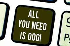 Writing note showing All You Need Is Dog. Business photo showcasing Get a puppy to be happier canine lovers cute animals. Keyboard key Intention to create royalty free illustration
