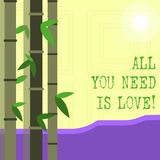 Writing note showing All You Need Is Love. Business photo showcasing Deep affection needs appreciation roanalysisce. Writing note showing All You Need Is Love royalty free illustration