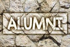 Writing note showing Alumni. Business photo showcasing Alum Old graduate Postgraduate Gathering College Academy Celebration Ideas. Message stone stones rock stock illustration