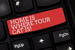 Writing note showing Home Is Where Your Cat Is. Business photo showcasing Kitten lovers feline protection cute animals. Keyboard key Intention to create stock photos