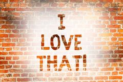 Writing note showing I Love That. Business photo showcasing Having affection for something or someone Roanalysistic. Feelings Brick Wall art like Graffiti stock illustration