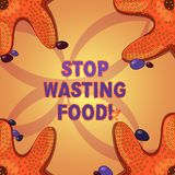 Writing note showing Stop Wasting Food. Business photo showcasing organization works for reduction food waste in society. Starfish on Four Corners with Pebbles royalty free illustration