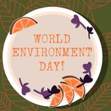 Writing note showing World Environment Day. Business photo showcasing awareness and the protection of our environment Cutouts of. Sliced Lime Wedge and Herb vector illustration