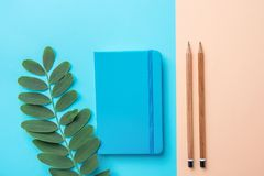 Writing Notepad Wood Pencils Green Plant Branch on Contrast Blue Peach Pink Pastel Color Background Combination.Business Education. Writing Notepad Wood Pencils royalty free stock photography