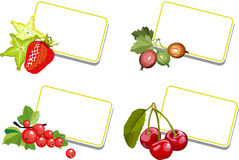 Writing notes berries Royalty Free Stock Photos