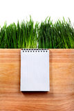 Writing Pad on the Board Stock Images