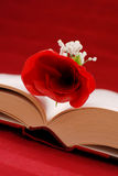 Writing a Romance Novel. With A Book And A Rose Royalty Free Stock Image