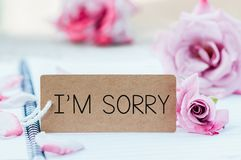 Writing sorry on card. With rose on notebook stock photography
