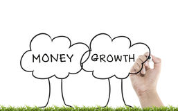 Writing trees with money growth word Royalty Free Stock Photo