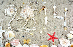 2014 written by sea shells Royalty Free Stock Photo
