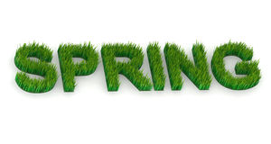 Written spring with grass Royalty Free Stock Photo