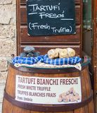 Written of white and black fresh truffles for sale royalty free stock images