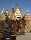 wroclaw городка Польши залы Стоковая Фотография