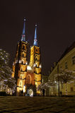 Wroclaw cathedral by night. Royalty Free Stock Photo