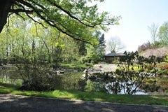 Wroclaw - japanträdgård Arkivfoton