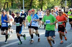 Wroclaw Marathon - runners Stock Photos