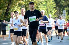 Wroclaw Marathon - runners Stock Photography