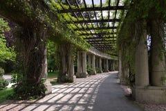 Wroclaw Peergola en el parque Foto de archivo