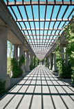 Wroclaw pergola in the sun Royalty Free Stock Photo