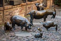 Wroclaw, Polônia - 9 de março de 2018: Massacre de Wroclaw, estátua de bronze dos animais da chacina no lugar de um medieval Imagens de Stock Royalty Free