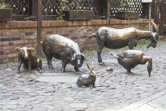 Massacre of Wroclaw, bronze statue of the slaughter animals , Wroclaw, Poland royalty free stock photos