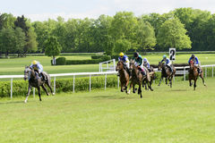 Wroclaw, Poland May 10 2015: Finish the race for horses only 3yearold group III in Wroclaw. Royalty Free Stock Image