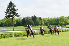 Wroclaw, Poland - May 10, 2015: Finish the race for 3-year-old horses only group III in Wroclaw. Stock Image