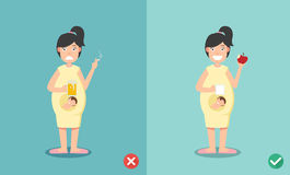 Wrong And Right For No Smoking Or Drinking When Pregnant Stock Image