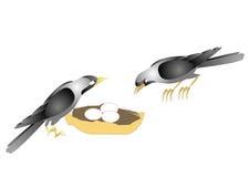 wrony ilustracja wektor