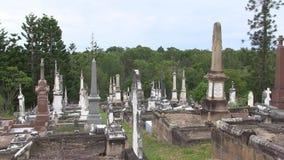 Wrony dzwonią out w wczesnego poranku cmentarzu zbiory