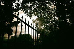 Free Wrought Iron Fence Royalty Free Stock Images - 95900099