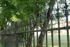 Wrought Iron Fence coated in cobwebs. A wrought Iron fence coated in cobwebs and green algae under a canopy of shady trees along a walking path in Eugene, Oregon Royalty Free Stock Photo