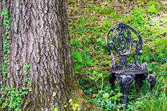 Wrought Iron Garden Chair in the Woods Stock Image
