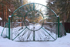 Wrought-iron gate. With the image of the sun with a smile green Royalty Free Stock Photo