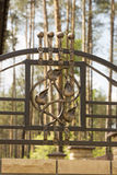 Wrought iron ornaments for gates and fence. Wrought iron ornaments for gates Stock Photos