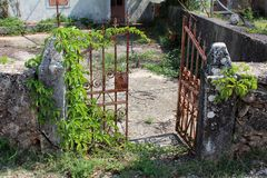 Wrought iron partially rusted open front yard doors of abandoned family house covered with crawler plant mounted on traditional. Stone wall on warm sunny day royalty free stock photo