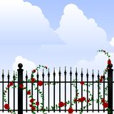 Wrought iron and roses Stock Photo