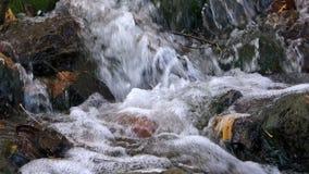 Wrząca żywa jasna woda rzeczny bicie przeciw skałom tworzy bąble, gulgocze wycie i bulgocze zbiory wideo