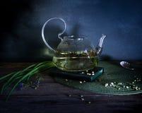 Wrząca woda i trawa w szklanym teapot Być może Rocznik Fotografia Royalty Free