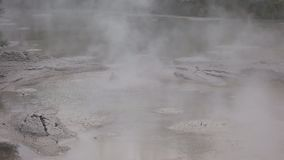 Wrzący borowinowy basen przy Rotorua nz