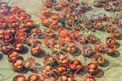 Wrzący jajka w Mae Khachan Gorącej wiośnie przy Mae Chedi Zdjęcie Stock