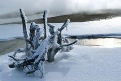 Wrzesień w Wyoming Zdjęcia Stock