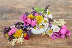 Wrzosowiskowa opieka z kwiatami Fotografia Royalty Free