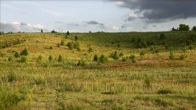 Wrzosowiskowi obszary trawiaści Ostatni światło słoneczne przed burzą Zdjęcie Royalty Free
