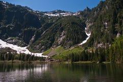 wrzosu jezioro zdjęcie royalty free