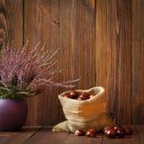 Wrzosy w ceramicznych garnkach i końskich kasztanach w jutowej torbie Obrazy Stock