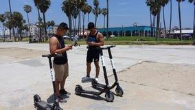 WS que aluga 'trotinette's do PÁSSARO na praia de Veneza Imagens de Stock