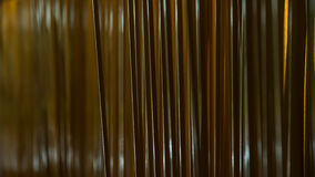 wsadź tła, drewniany Fotografia Stock